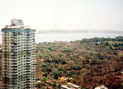 Mumbai: Towers of silence